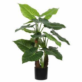 Albero artificiale Taro Araceae 80 cm