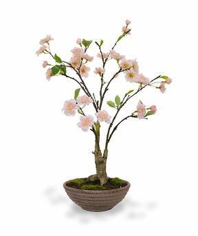 Bonsai artificiale Ciliegio 55 cm