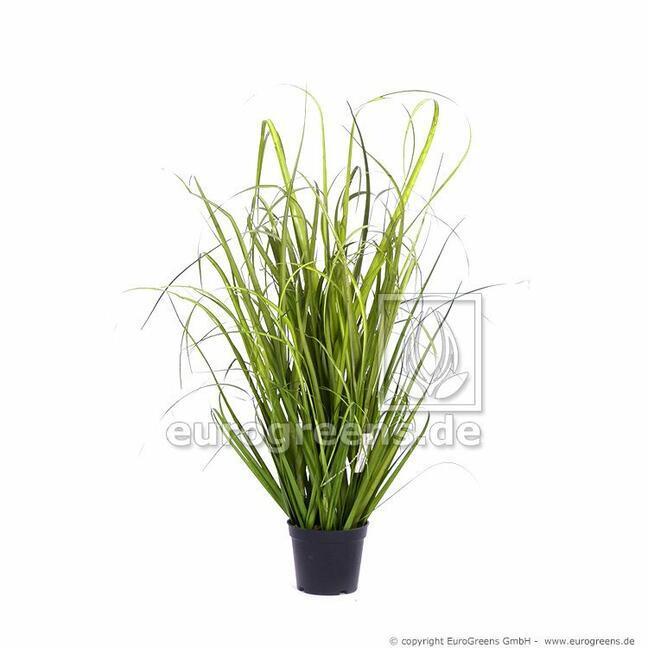 Fascio d'erba artificiale Canna comune in vaso di fiori 60 cm