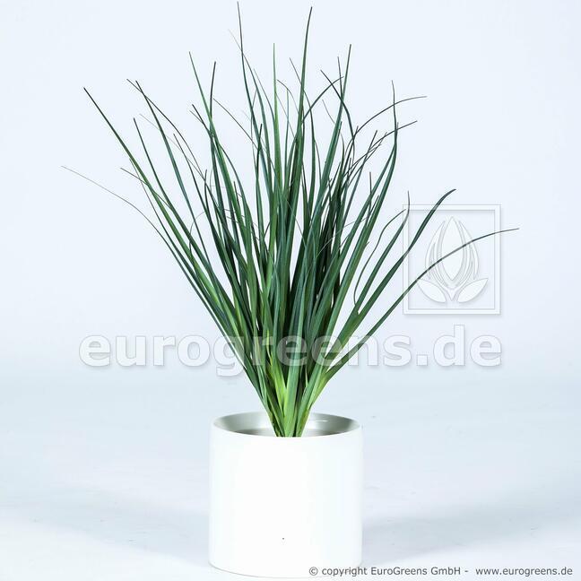 Fascio d'erba per scanalature artificiali Canna comune 55 cm