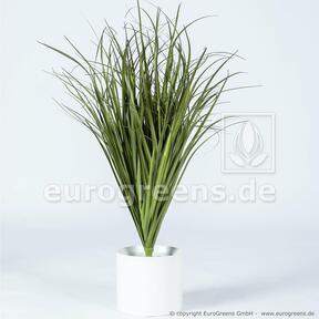 Fascio d'erba per scanalature artificiali Canna comune 80 cm