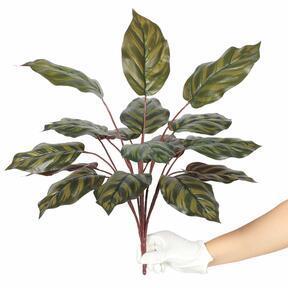 Kalatea pianta artificiale 50 cm