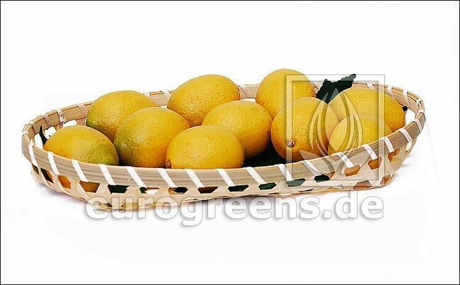 Limone Artificiale
