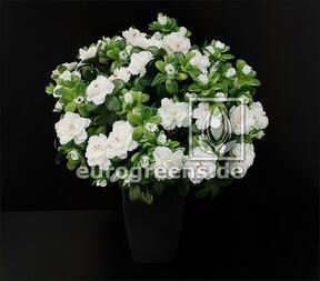 Mazzo artificiale Azalea belga bianca 40 cm