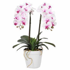 Orchidea artificiale 43 cm