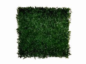 Pannello di conifere artificiale Cypruštek tujovitý - 50x50 cm