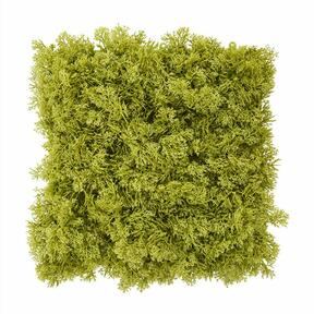 Pannello di muschio verde artificiale - 25x25 cm