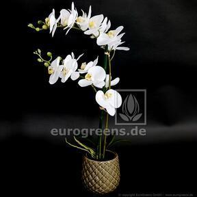 Pianta artificiale Orchidea bianca 65 cm