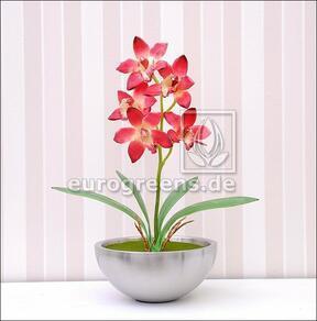 Pianta artificiale Orchidea Cymbidium rosso bordeaux 50 cm