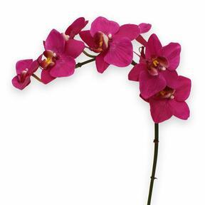Pianta artificiale Orchidea viola 80 cm