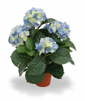 Pianta artificiale Ortensia blu 45 cm