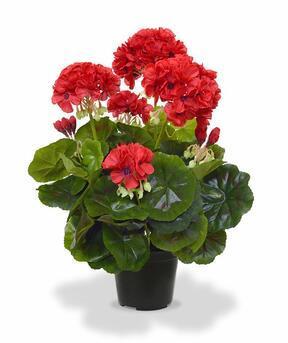 Pianta artificiale Pakost rosso 40 cm