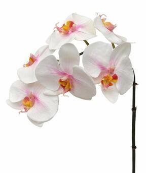 Ramo artificiale di Orchidea rosa-bianco 55 cm